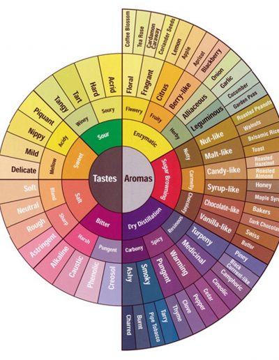 Taste and Aroma Wheel, from Specialty Coffee Association Of America